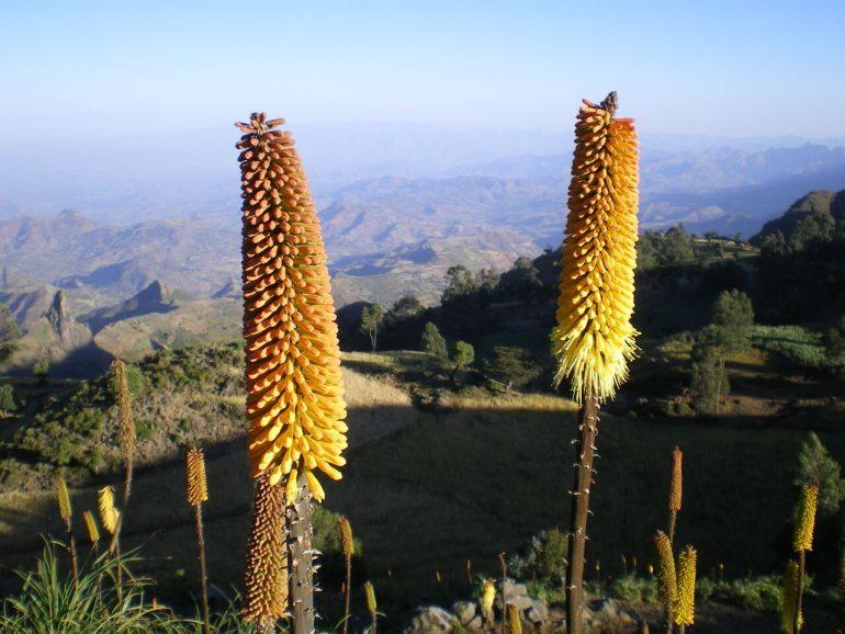 Äthiopien, Simien Berge