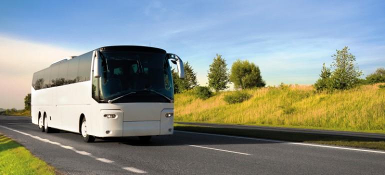 Reisebus, Inforeisen für Multiplikatoren, Arche Noah Reisen