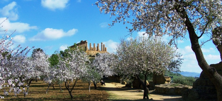 Agrigento, Gruppenreise Sizilien, Kulturreise Sizilien, Arche Noah Reisen