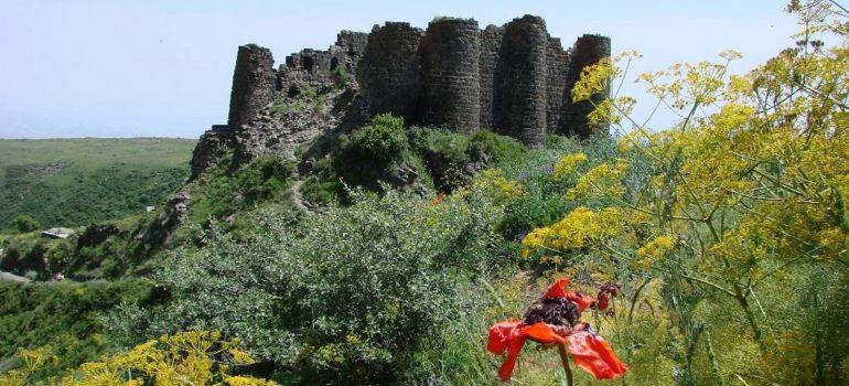 Amberd Festung, Kulturreise Armenien, Besichtigungen, Armenien mit Reiseleitung, Arche Noah Reisen