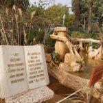 Berg der Seligpreisungen, Israel, Pilgern, Pilgern mit der Pfarrei, Arche Noah Reisen
