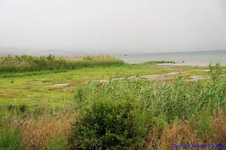 Galiläa, Foto: Pfr. Thomas Linnartz, Pilgerreise Israel, Pilgern im Heiligen Land, Arche Noah Reisen