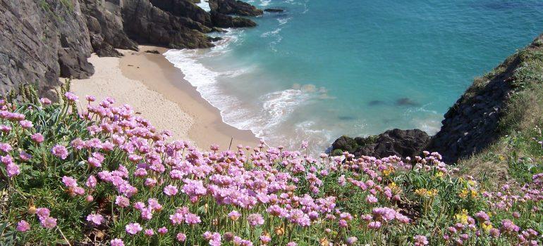 Irland, Pilgerreise Irland, Reise für Pfarrei, Reiseveranstalter Pilgerreise, Arche Noah Reisen