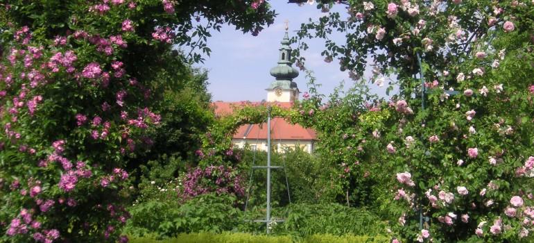 Seitenstetten Garten Rosenbogen, Gruppenreise komplett organisiert, Programmvorschlag Gruppenreise Österreich, Arche Noah Reisen