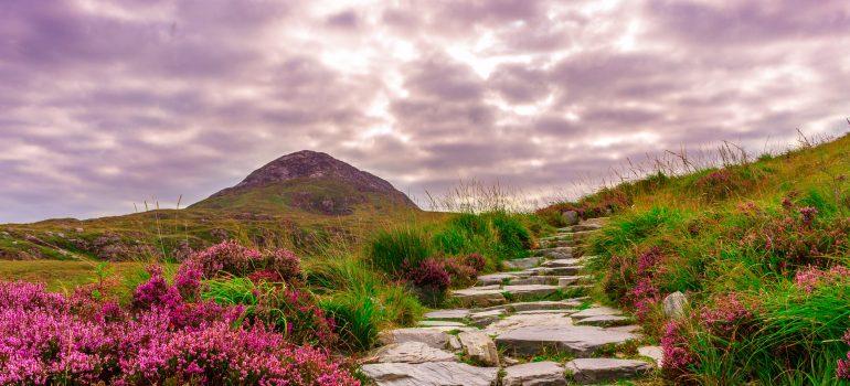 Irland, www.pixabay.com